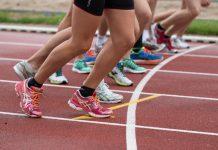 Białko w diecie sportowca - dlaczego jest tak ważne?